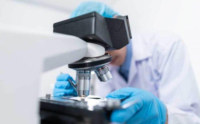 Intelligenza Artificiale per contrastare le future pandemie